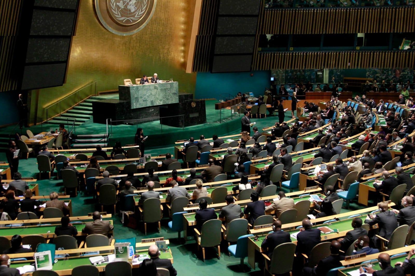 Conseil de sécurité (UN) : 2012 – 2013
