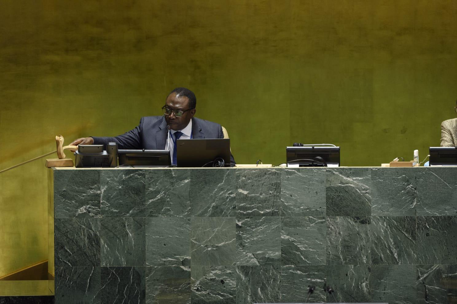 ONU : Vice présidence de la 75e Session de l'Assemblée générale